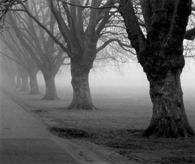 photograph of Jesus Green, Cambridge
