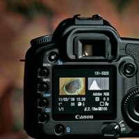 Photographic services - Introduction